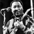 muddy waters incidente auto