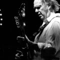 neil young heart gold